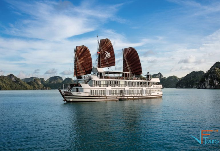book cheap pelican cruises halong bay