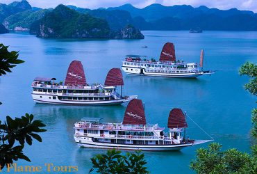 swan cruises halong Bay and Bai Tu long bay