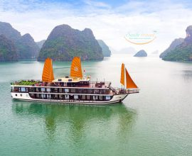 Peony Cruisess are the leading line in 5-star cruises in Ha Long Bay.